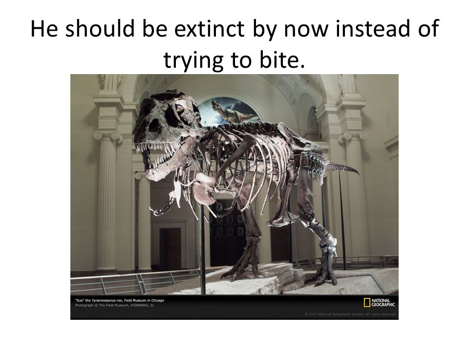 He should be extinct by now instead of trying to bite.