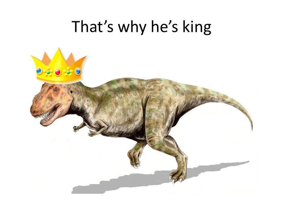 That's why he's king