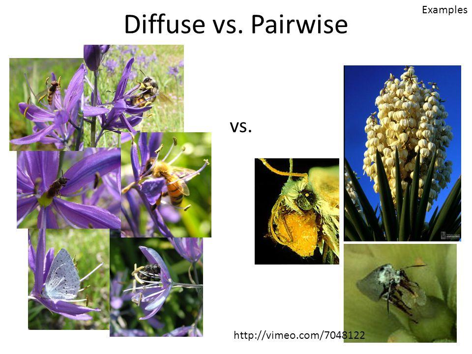 Diffuse vs. Pairwise Examples vs. http://vimeo.com/7048122