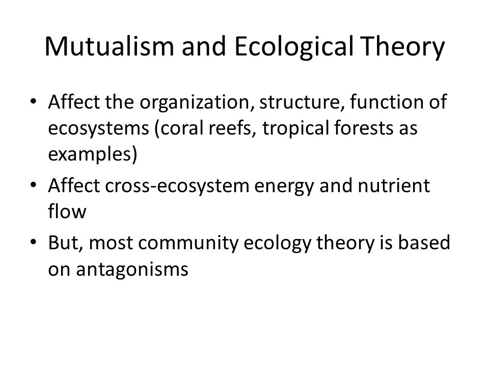 Mutualism and Ecological Theory