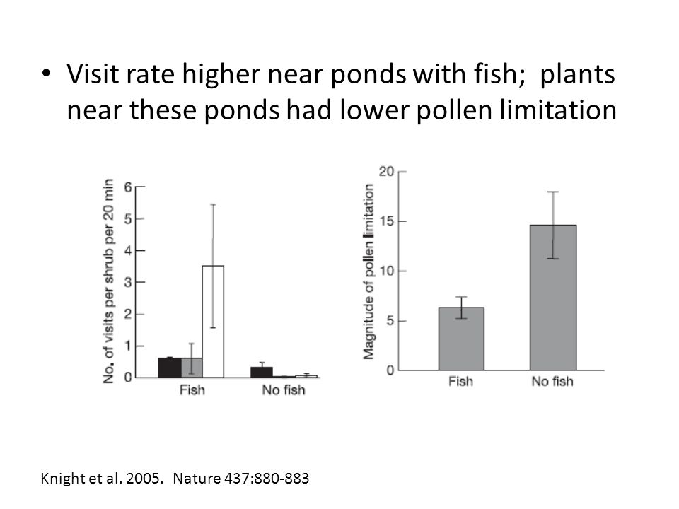 Visit rate higher near ponds with fish; plants near these ponds had lower pollen limitation