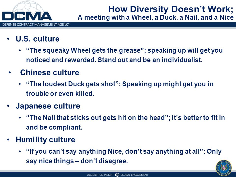 How Diversity Doesn't Work; A meeting with a Wheel, a Duck, a Nail, and a Nice