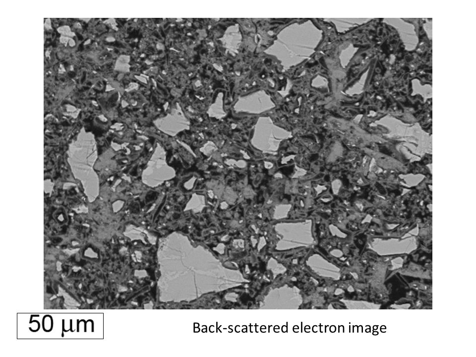 Back-scattered electron image