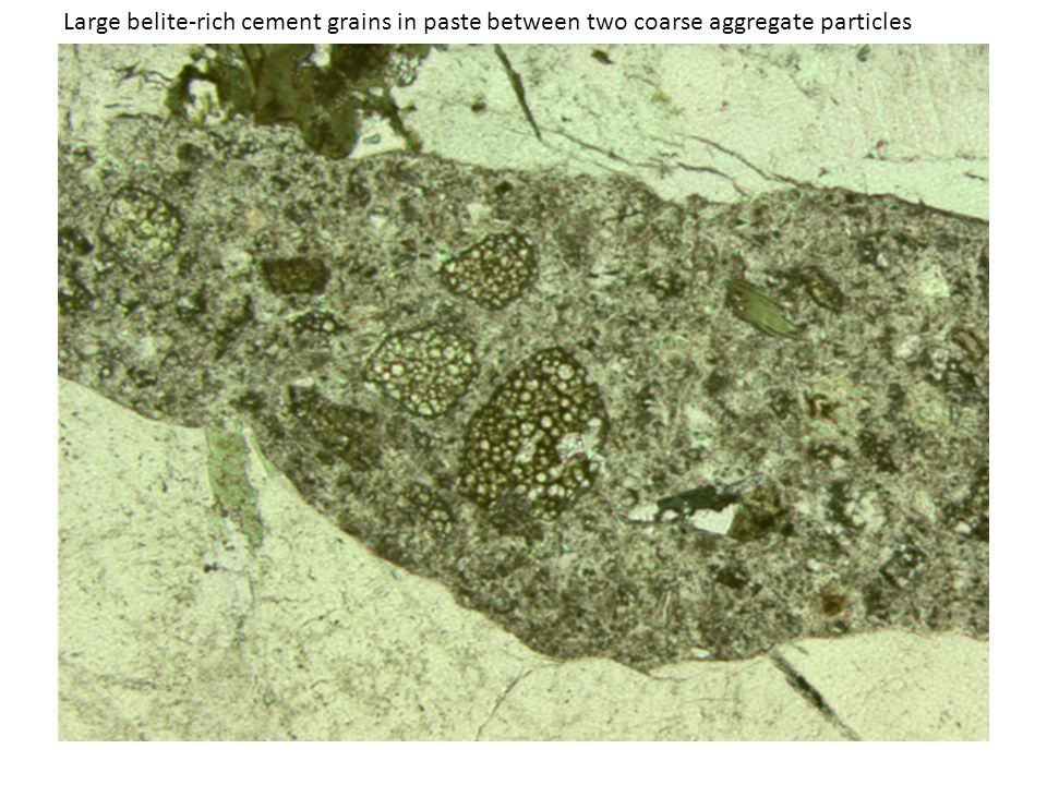 Large belite-rich cement grains in paste between two coarse aggregate particles