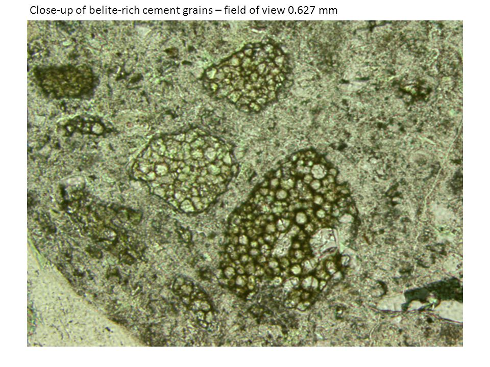 Close-up of belite-rich cement grains – field of view 0.627 mm