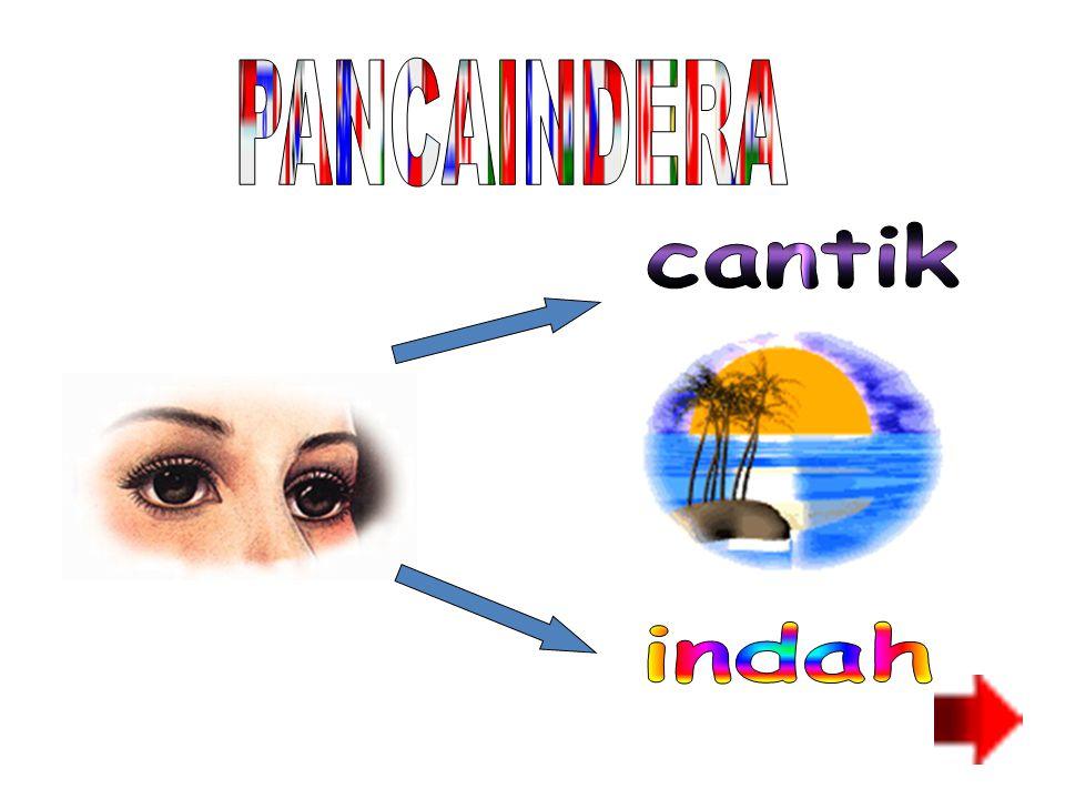 PANCAINDERA cantik indah