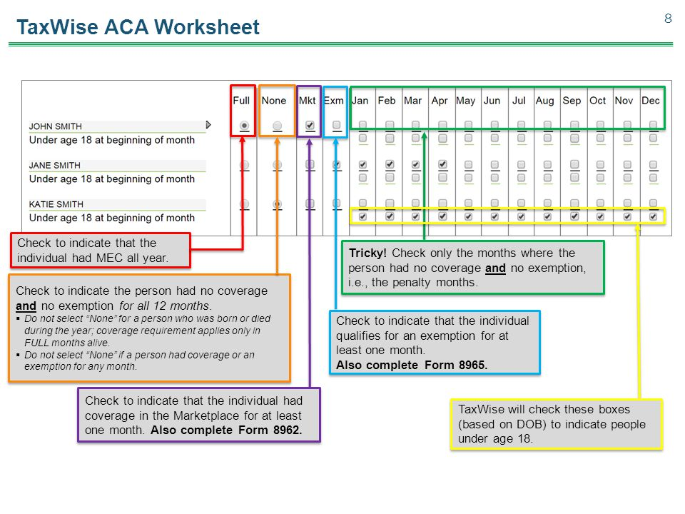TaxWise ACA Worksheet Check to indicate that the individual had MEC all year.