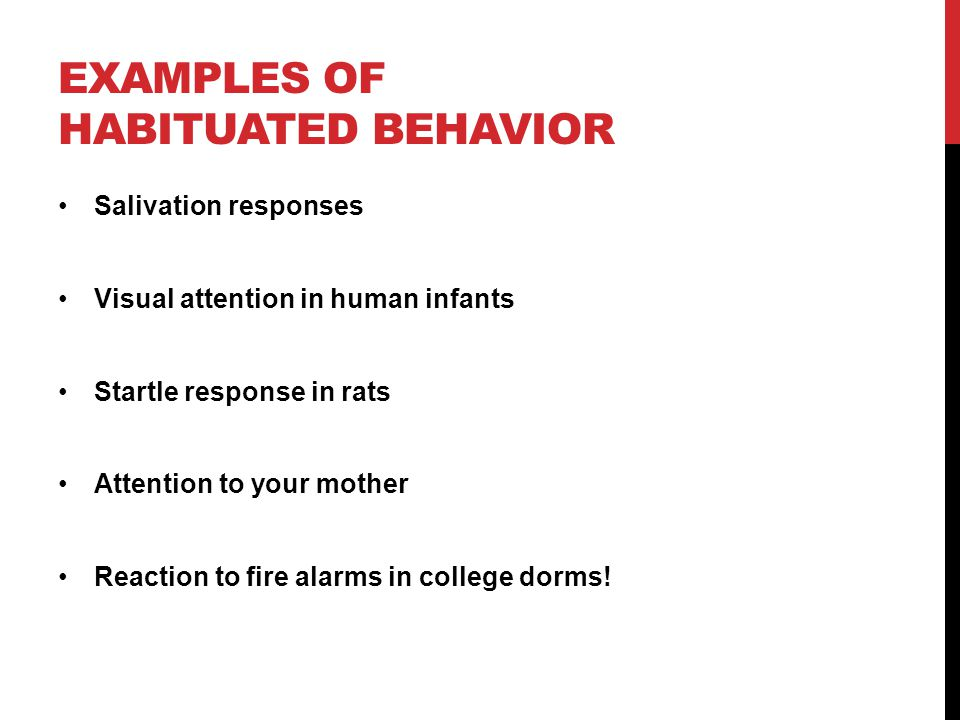 Examples of habituated behavior