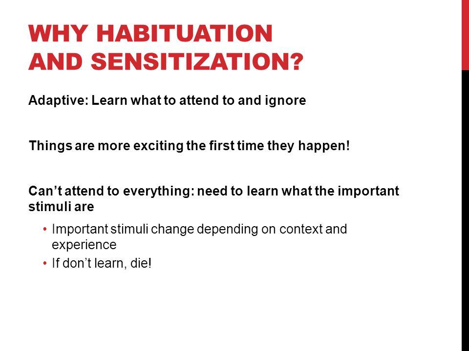Why habituation and sensitization