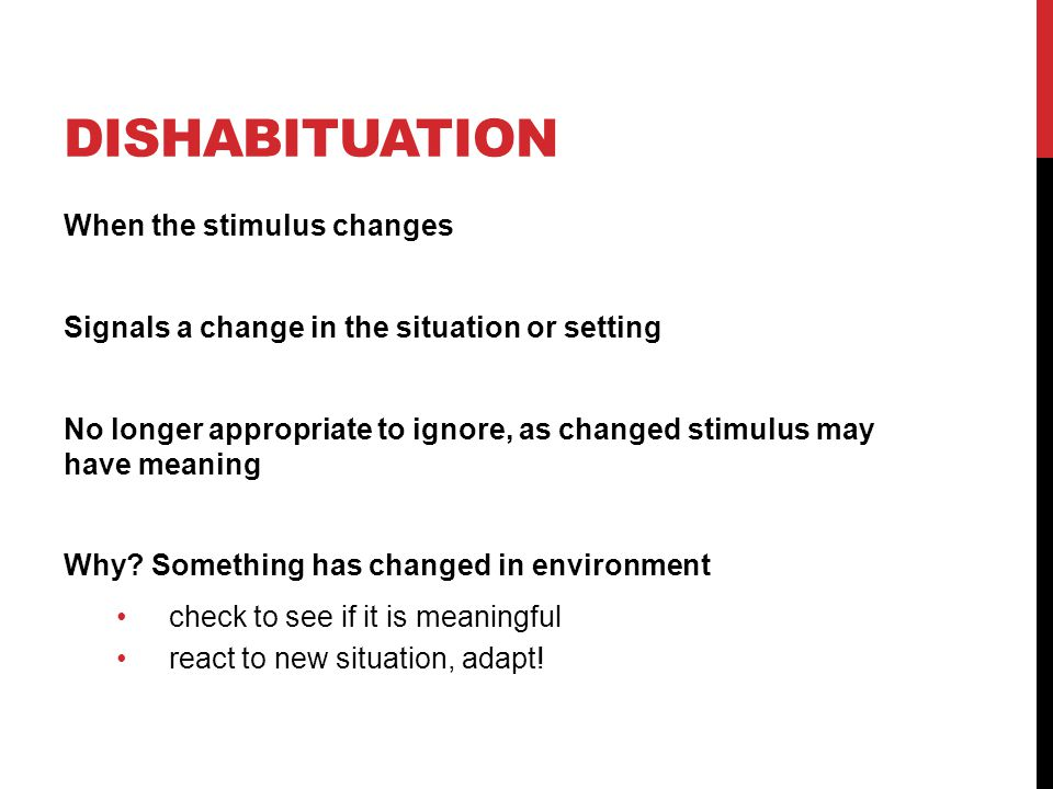 Dishabituation When the stimulus changes