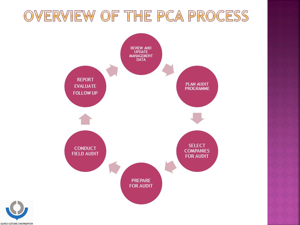 Overview of the PCA process