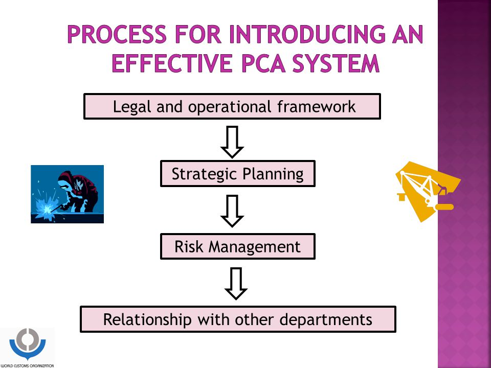 Process for introducing an effective PCA system