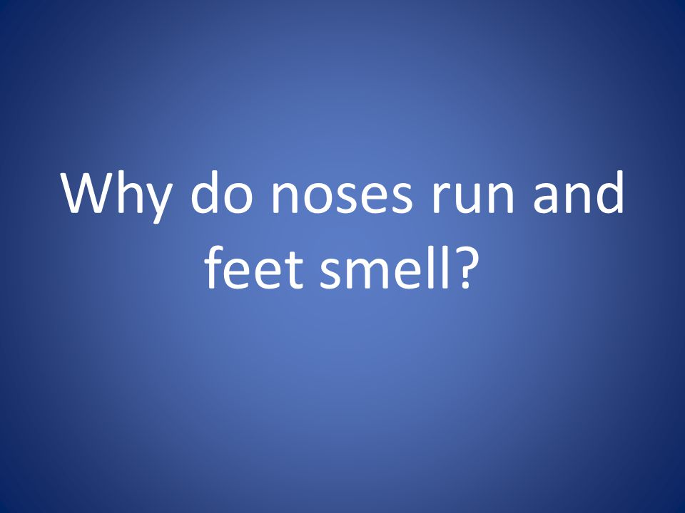 Why do noses run and feet smell