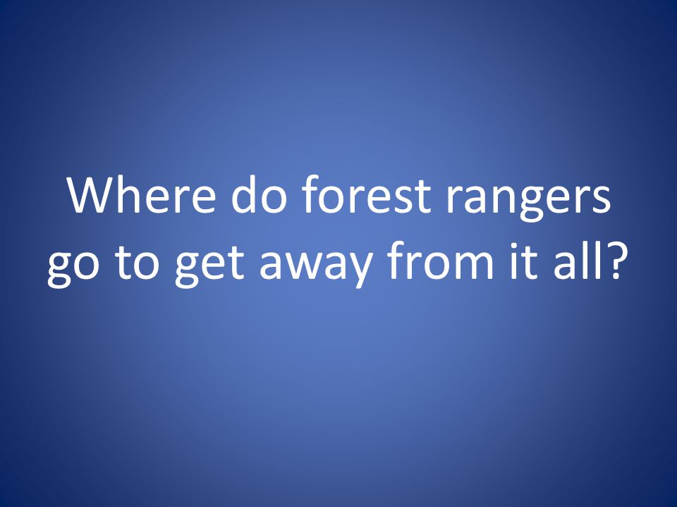 Where do forest rangers go to get away from it all