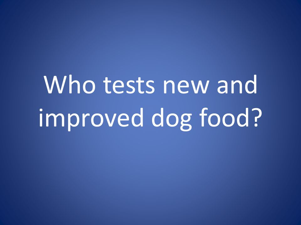 Who tests new and improved dog food