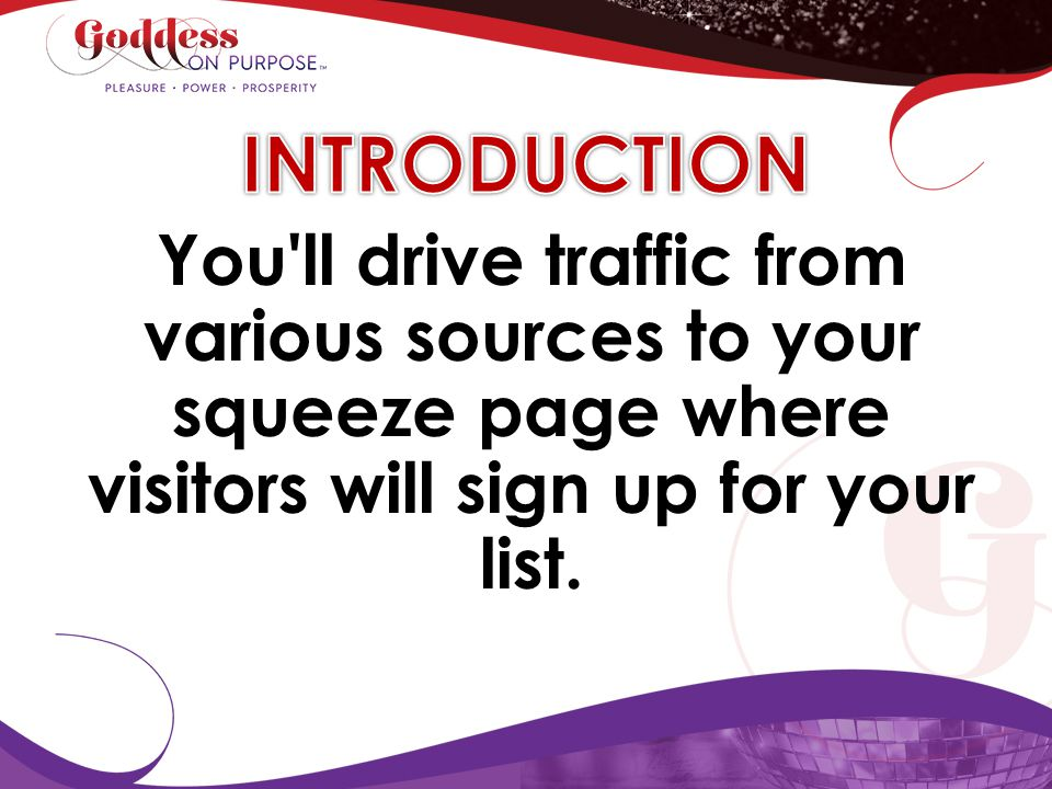 INTRODUCTION You ll drive traffic from various sources to your squeeze page where visitors will sign up for your list.