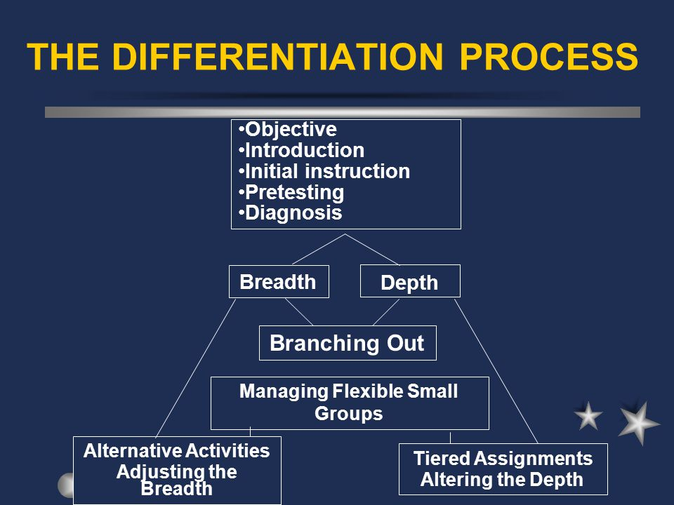 THE DIFFERENTIATION PROCESS