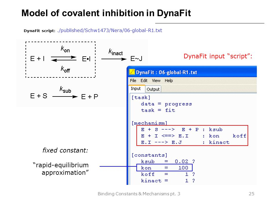 Model of covalent inhibition in DynaFit