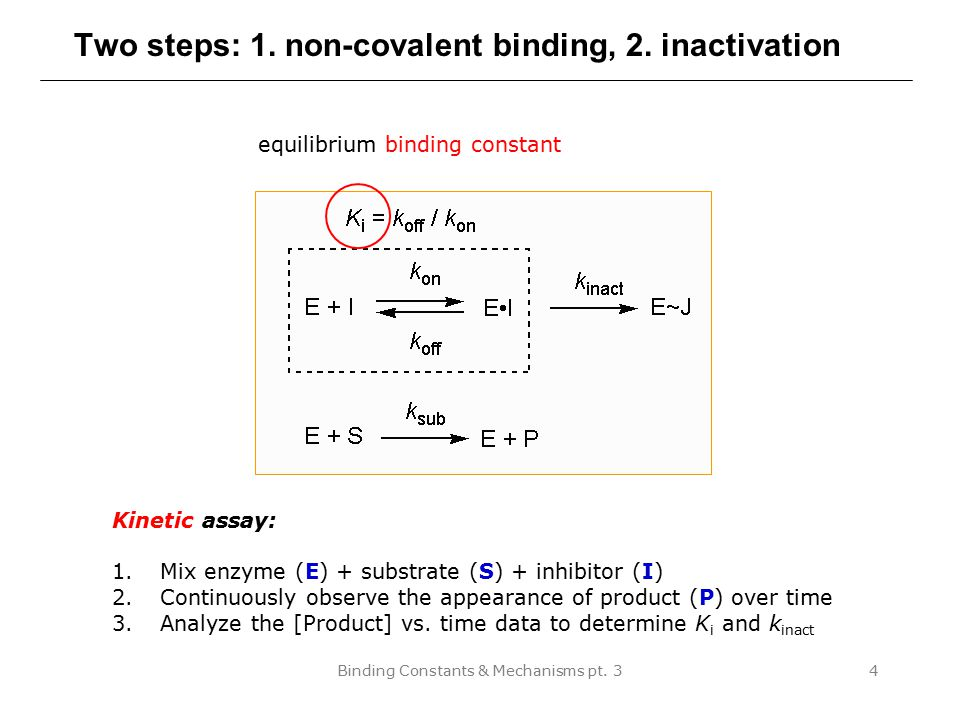 Two steps: 1. non-covalent binding, 2. inactivation