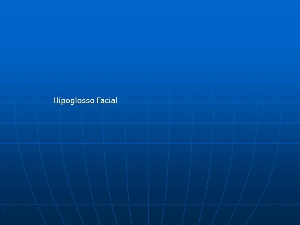 Hipoglosso Facial