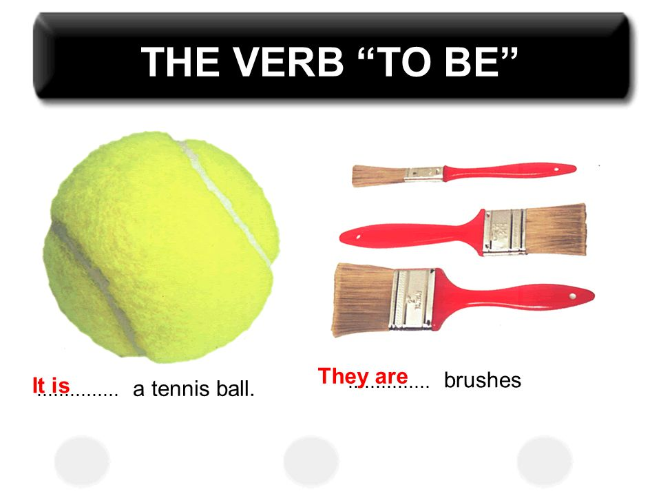 THE VERB TO BE They are brushes It is a tennis ball. ...............
