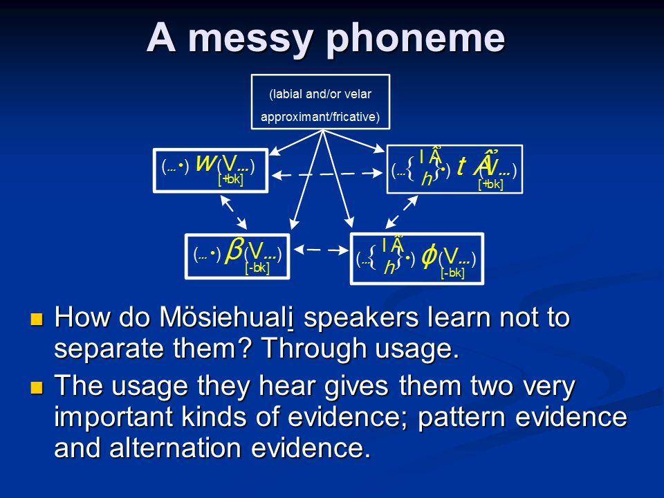 A messy phoneme How do Mösiehuali speakers learn not to separate them Through usage.