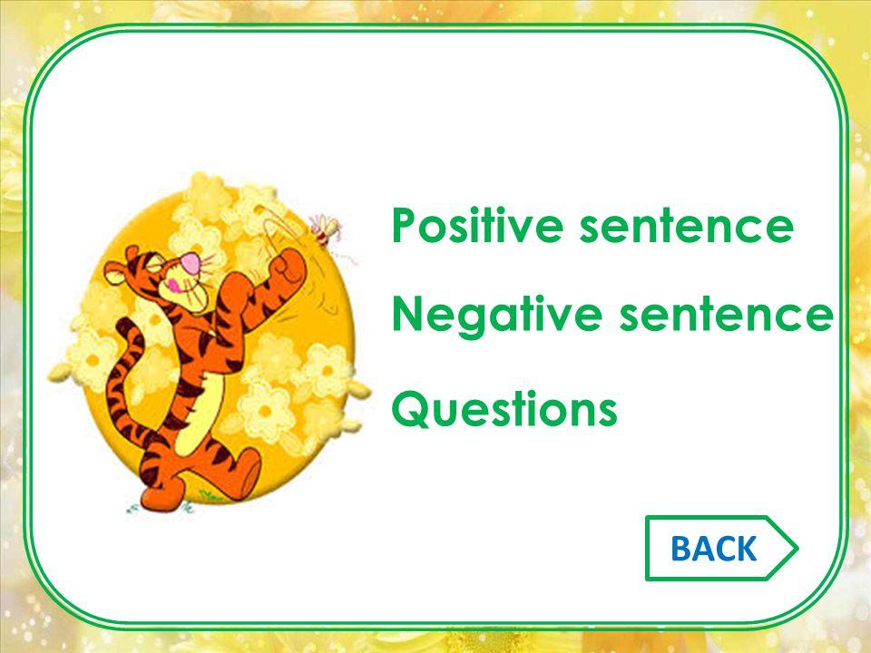 Positive sentence Negative sentence Questions BACK