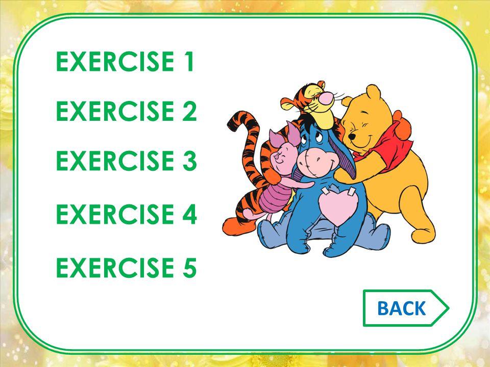 EXERCISE 1 EXERCISE 2 EXERCISE 3 EXERCISE 4 EXERCISE 5 BACK