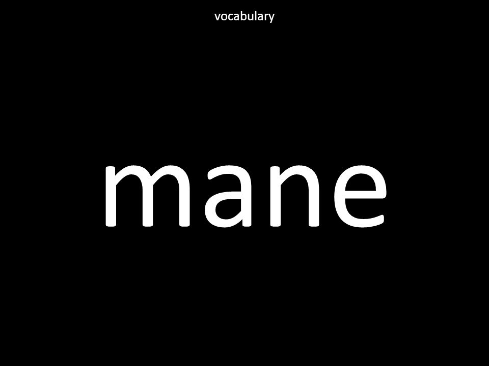 mane vocabulary