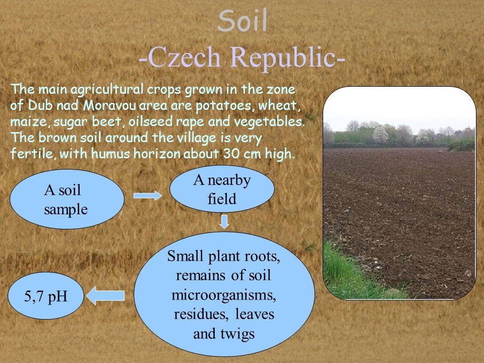 Soil -Czech Republic- A nearby field A soil sample