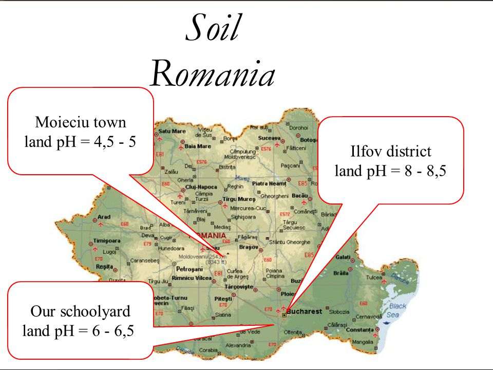 Soil Romania Moieciu town land pH = 4,5 - 5 Ilfov district