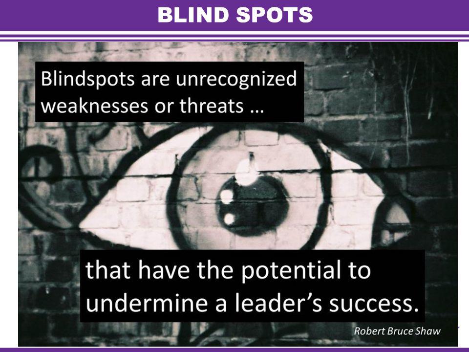 BLIND SPOTS Foundation Academy ‐ Facilitators Guide