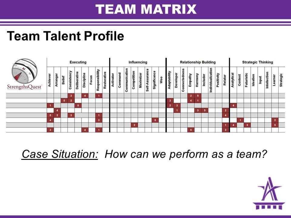 TEAM MATRIX Team Talent Profile