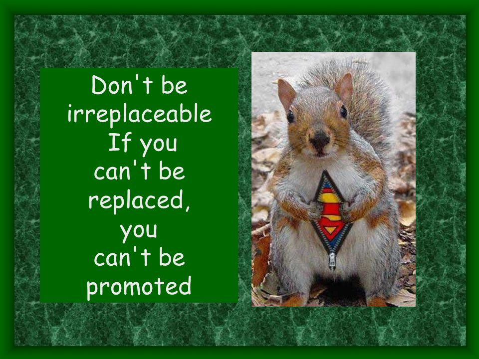 Don t be irreplaceable If you can t be replaced, you promoted