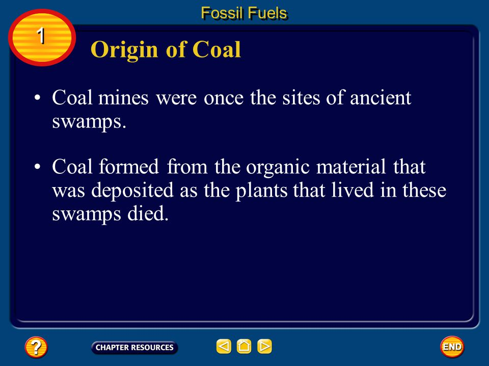Origin of Coal 1 Coal mines were once the sites of ancient swamps.