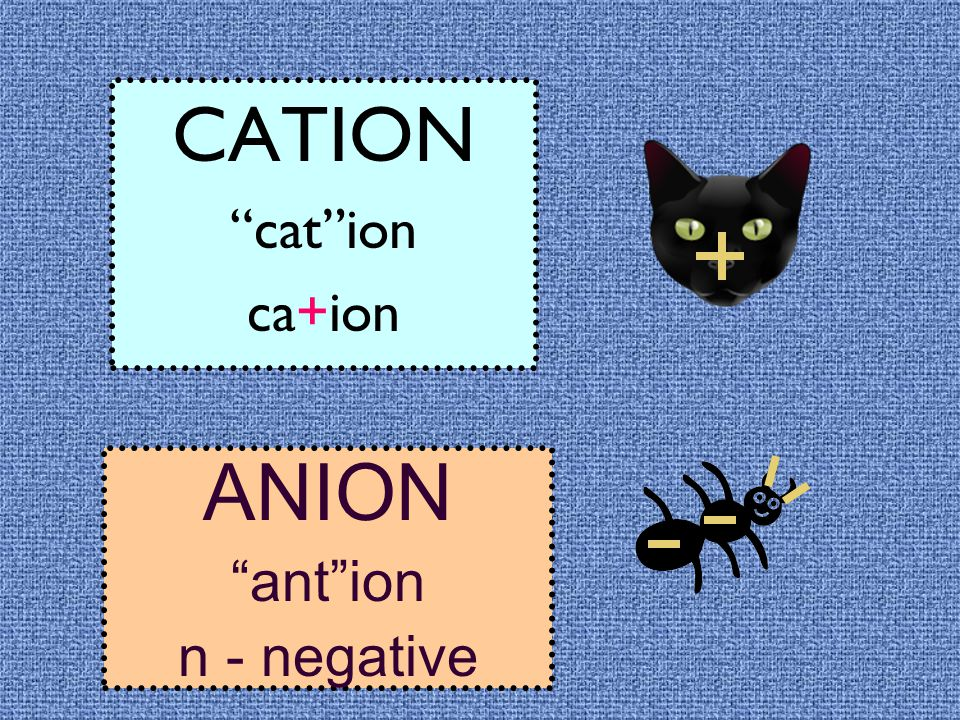 CATION cat ion ca+ion ANION ant ion n - negative