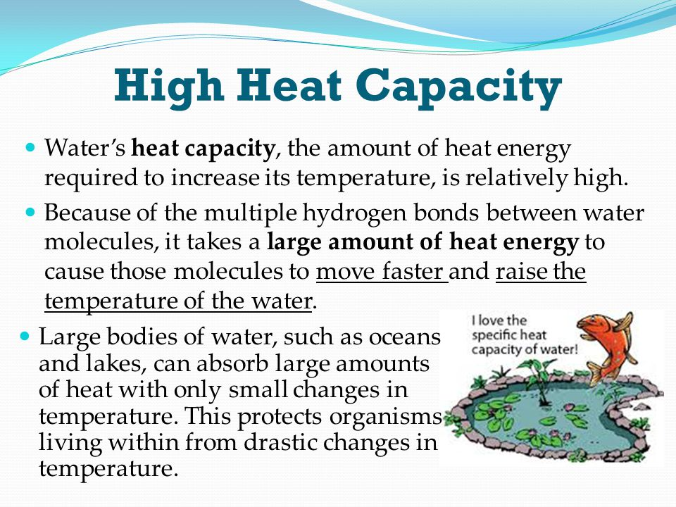 High Heat Capacity Water's heat capacity, the amount of heat energy required to increase its temperature, is relatively high.