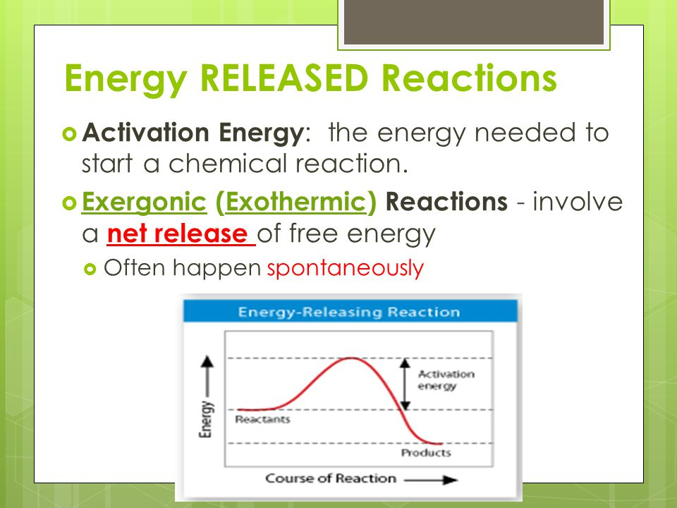 Energy RELEASED Reactions