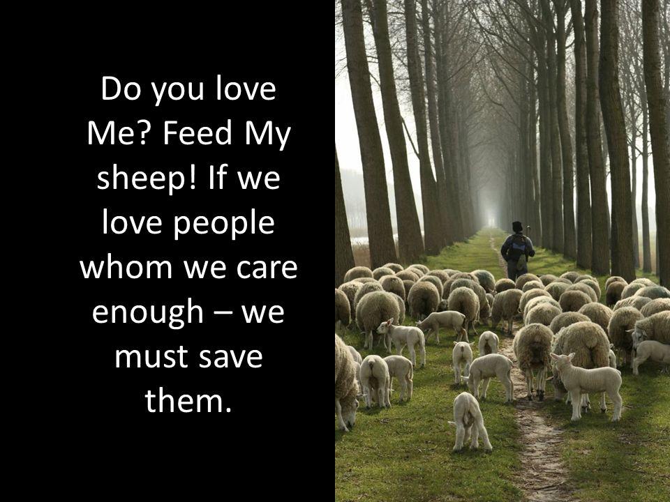 Do you love Me. Feed My sheep