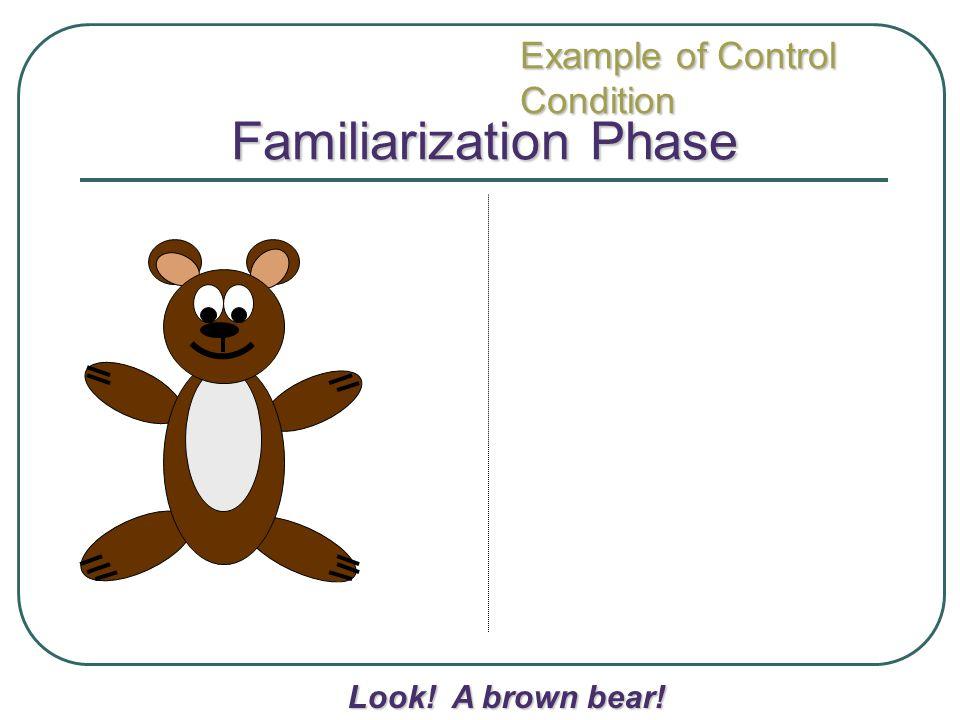 Familiarization Phase