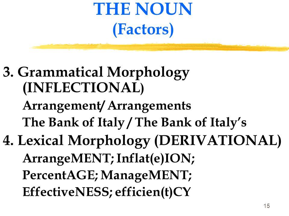 THE NOUN (Factors) 3. Grammatical Morphology (INFLECTIONAL)