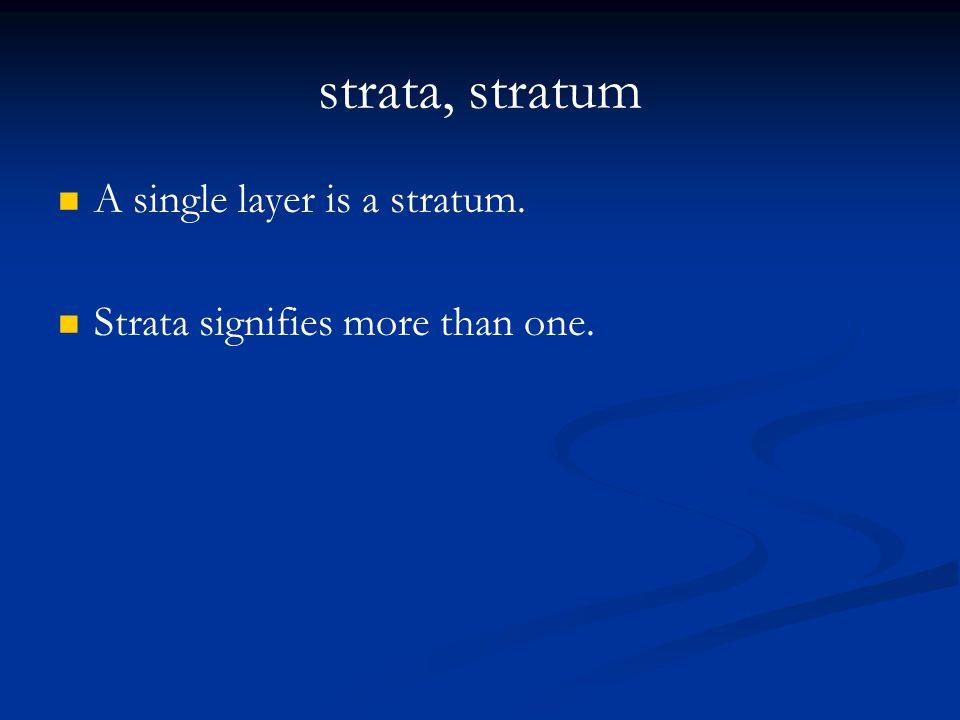 strata, stratum A single layer is a stratum.