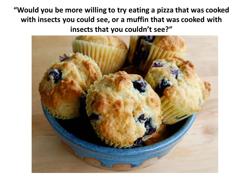 Would you be more willing to try eating a pizza that was cooked with insects you could see, or a muffin that was cooked with insects that you couldn't see