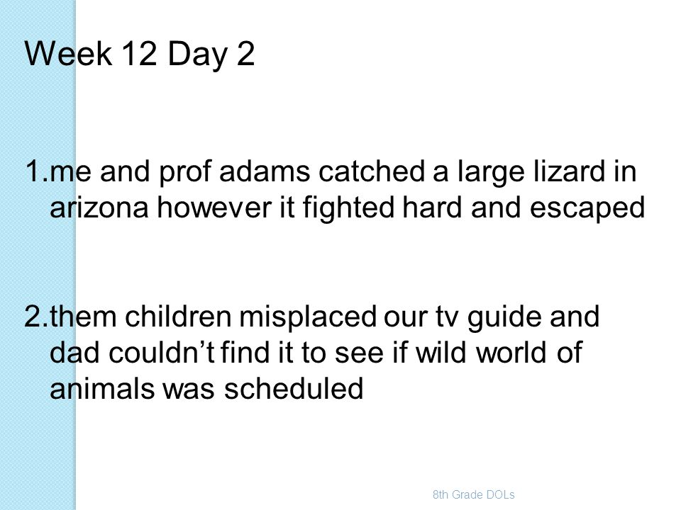 Week 12 Day 2 me and prof adams catched a large lizard in arizona however it fighted hard and escaped.
