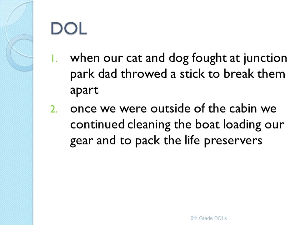 DOL when our cat and dog fought at junction park dad throwed a stick to break them apart.