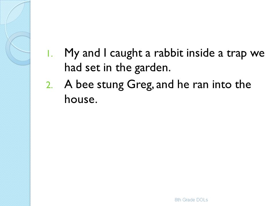 My and I caught a rabbit inside a trap we had set in the garden.