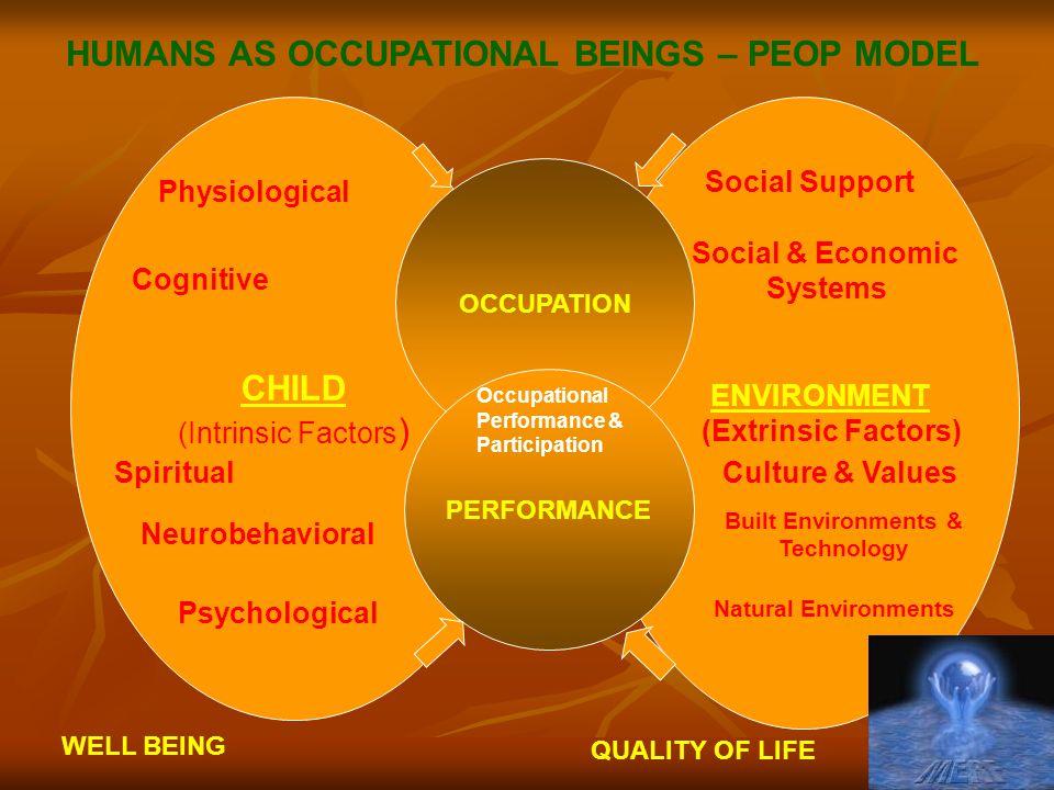 HUMANS AS OCCUPATIONAL BEINGS – PEOP MODEL