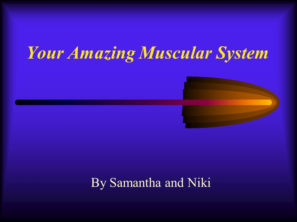 Your Amazing Muscular System