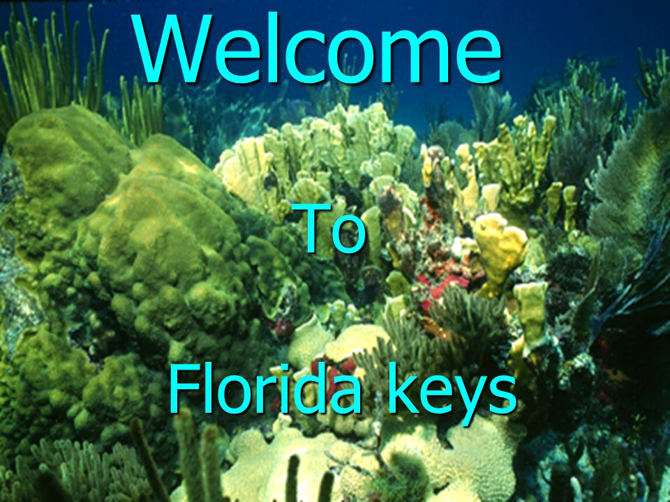 Welcome To Florida keys