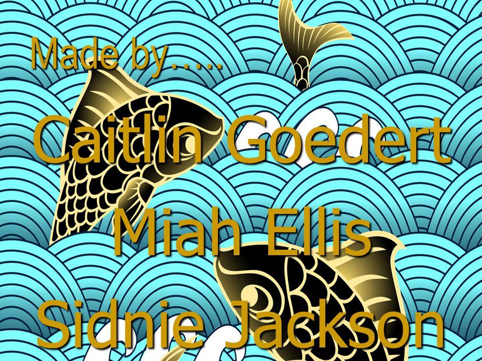 Made by….. Caitlin Goedert Miah Ellis Sidnie Jackson DeWayne Hayes